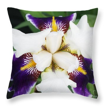Throw Pillow featuring the photograph Purple Passion by Michael Waters