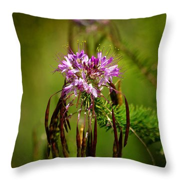 Throw Pillow featuring the photograph Purple Pizzazz by Vicki Pelham