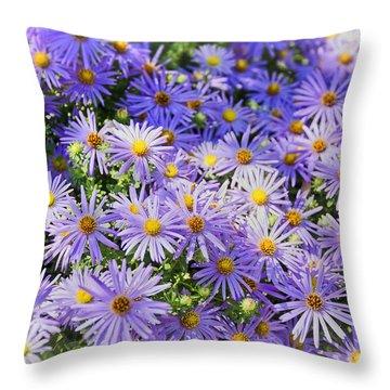 Purple Reigns Throw Pillow by Joan Carroll