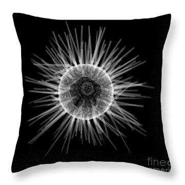 Purple Sea Urchin Throw Pillow by Ted Kinsman
