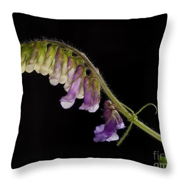 Throw Pillow featuring the photograph Purple Vetch by Art Whitton