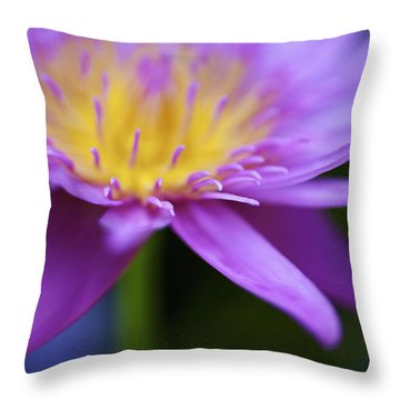 Purple Water Lily Petals Throw Pillow by Kicka Witte
