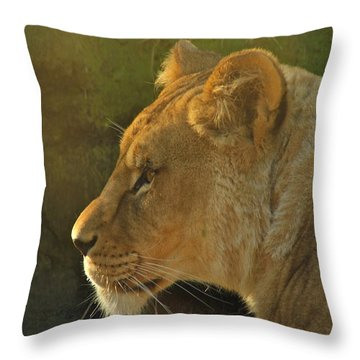 Pursuit Of Pride Throw Pillow