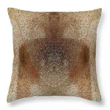 Qi Throw Pillow by Christopher Gaston