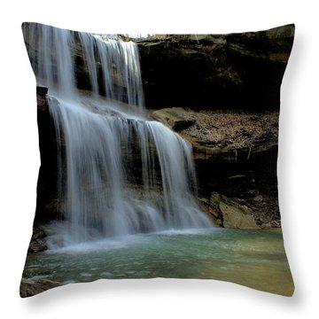 Quakertown Falls Throw Pillow