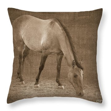 Quarter Horse In Sepia Throw Pillow by Betty LaRue
