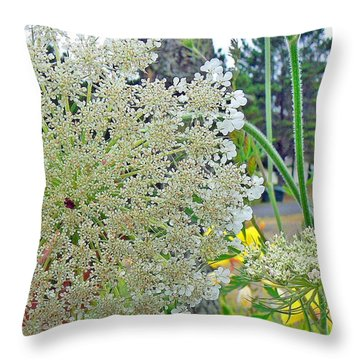 Queen Anne's Lace Throw Pillow by Pamela Patch
