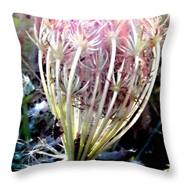 Queen Ann's Lace Sunny Glory Throw Pillow