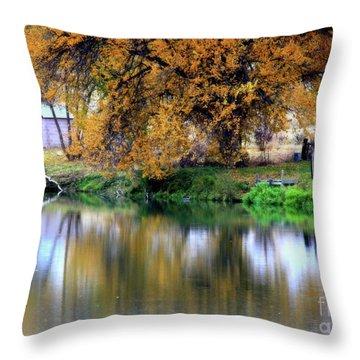 Quiet Autumn Day Throw Pillow by Carol Groenen