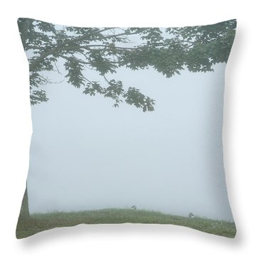 Quiet Fog Rolling In Throw Pillow by Karol Livote