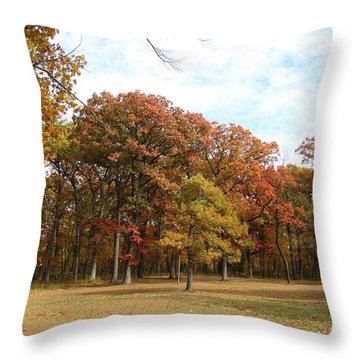 Quiet Forest 2 Throw Pillow by Cedric Hampton