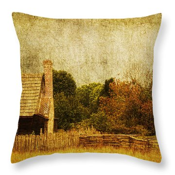 Quiet Life Throw Pillow by Andrew Paranavitana