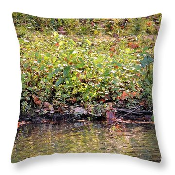Quiet Moment Throw Pillow by Maria Urso