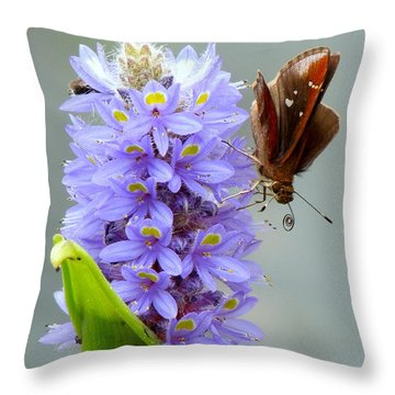 Quilling Butterfly Throw Pillow by Renee Trenholm
