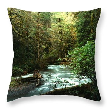 Quineault Rain Forest Throw Pillow by Rick Frost