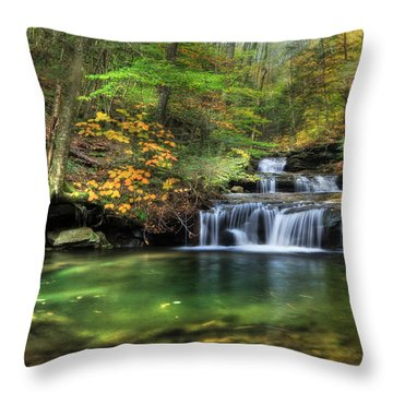 Quinn Run Cascades Throw Pillow