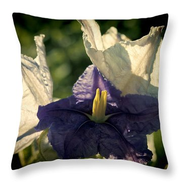 Radiance Throw Pillow by Steven Sparks