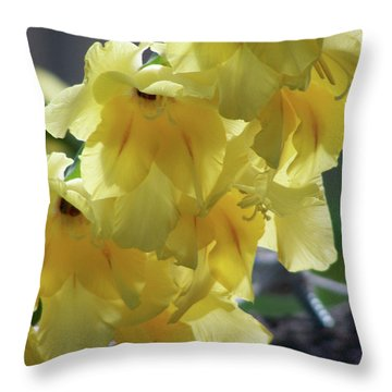Throw Pillow featuring the photograph Radiance by Thomas Woolworth