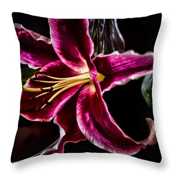 Radiating Romance Throw Pillow