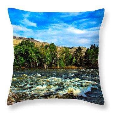 Raging River Throw Pillow by Robert Bales