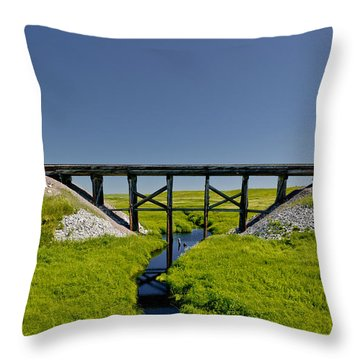 Railroad Trestle Throw Pillow by Roderick Bley