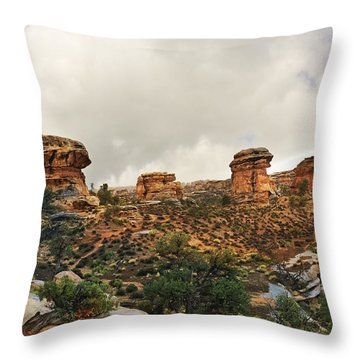 Rain At The Needles District Throw Pillow by Marty Koch