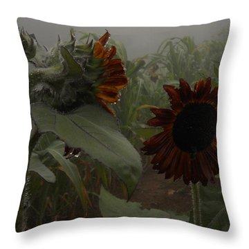 Throw Pillow featuring the photograph Rain In The Sunflower Garden by Diannah Lynch