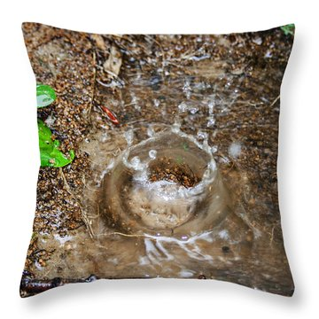Throw Pillow featuring the photograph Rain Splash by Ester  Rogers