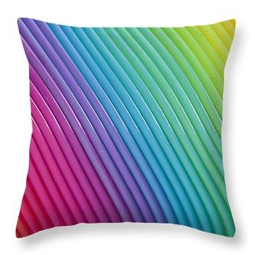 Rainbow 6 Throw Pillow by Steve Purnell