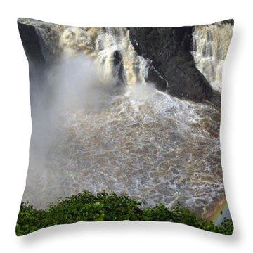 Rainbow And The Waterfall Throw Pillow by Vilas Malankar