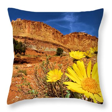 Rainbow Garden Throw Pillow