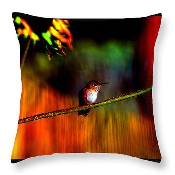 Rainbow Gardens Throw Pillow by Susanne Still