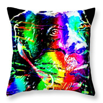 Rainbow Lab Throw Pillow by Barbara Griffin