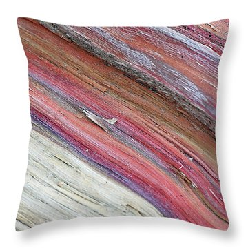 Throw Pillow featuring the photograph Rainbow Wood by Lisa Phillips