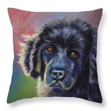 Rainbows And Sunshine - Newfoundland Puppy Throw Pillow
