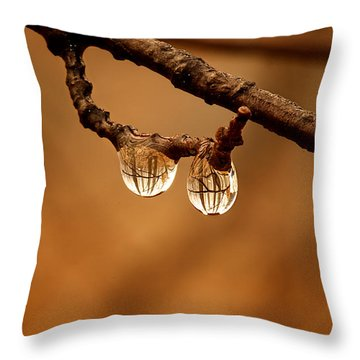 Raindrop Reflection Throw Pillow