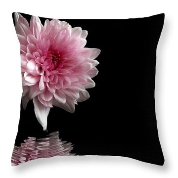 Raindrops...   Throw Pillow