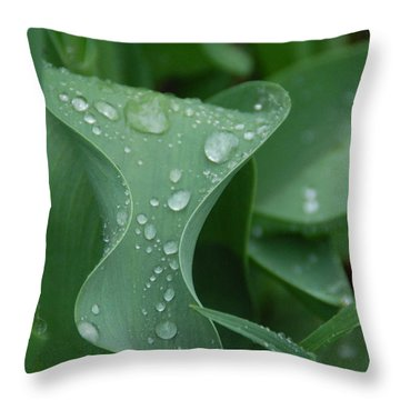 Raindrops Throw Pillow by Aimee L Maher Photography and Art Visit ALMGallerydotcom