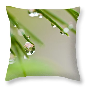 Raindrops On Needles Throw Pillow by Trevor Chriss