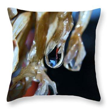 Throw Pillow featuring the photograph Raindrops On Tillandsia Bergeri by Werner Lehmann