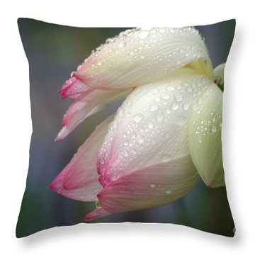 Rained Upon Throw Pillow by Living Color Photography Lorraine Lynch