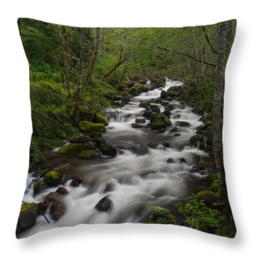 Rainier Forest Flow Throw Pillow by Mike Reid