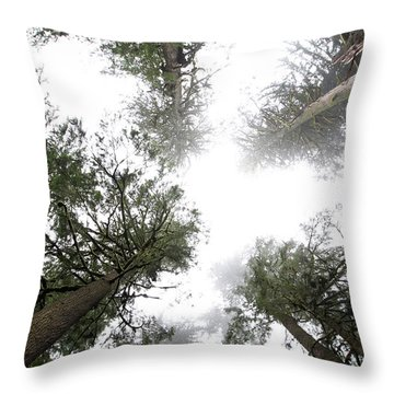 Rainier Misty Morning Throw Pillow by David Yunker
