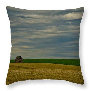 Rainy Day Blues Throw Pillow by Dan Mihai