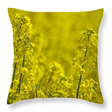 Rapeseed Blossoms Throw Pillow
