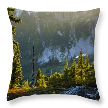 Rare Sunset Throw Pillow by Albert Seger