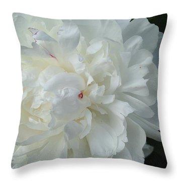 Rarely Perfect Throw Pillow