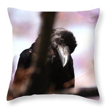 Raven Outside My Window Throw Pillow