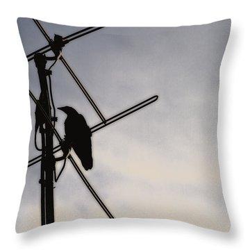 Ravens Perch Throw Pillow by Karol Livote