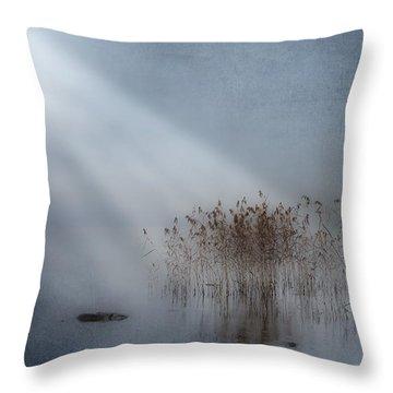 Rays Of Light Throw Pillow by Joana Kruse